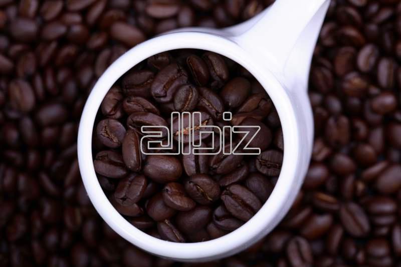 購入する コーヒー 穀物コーヒー CRASTAN