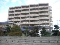 物件名 アネージュ石川ベルテ 9階 所在地 茨城県ひたちなか市石川町