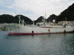 Sell, ship, made in Japan