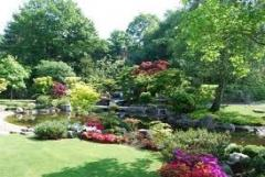Japanese garden, heart.